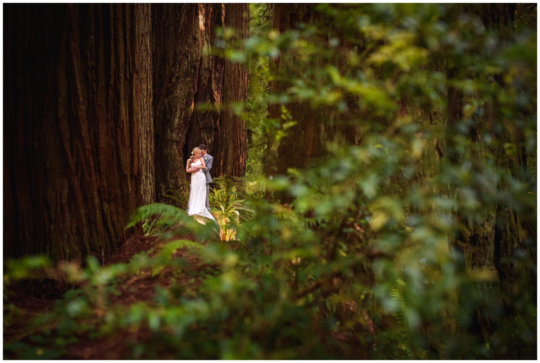 Redwood-Forest-destination-wedding-photography-_0081.jpg