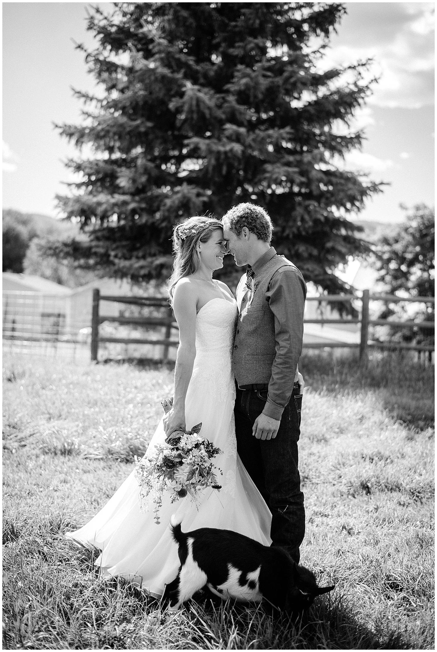 Fort-collins-colorado-farm-wedding_0054.jpg