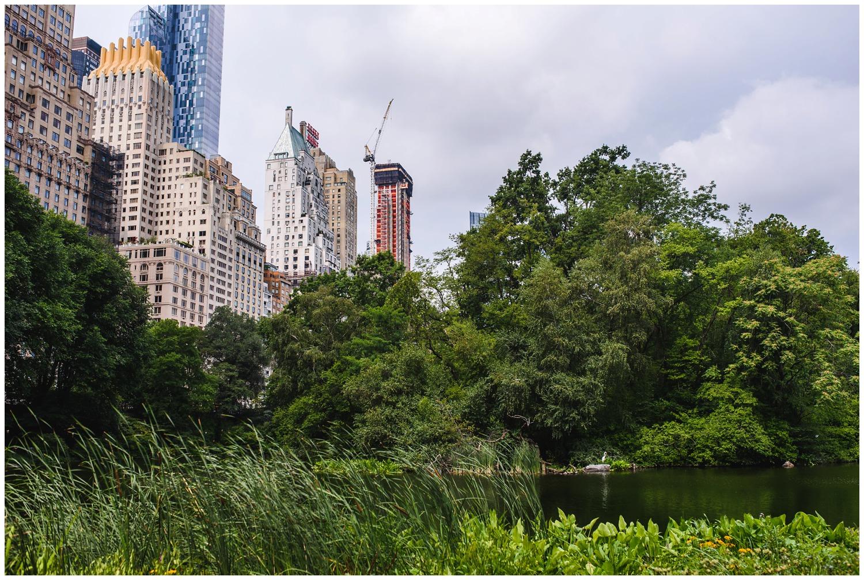 New-york-city-tourist-photography-anniversary_0100.jpg