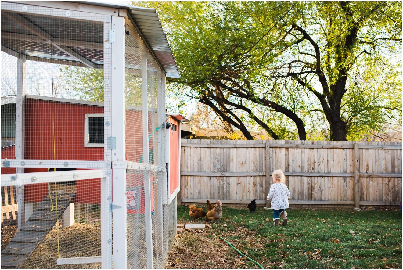 little girl chases chicken