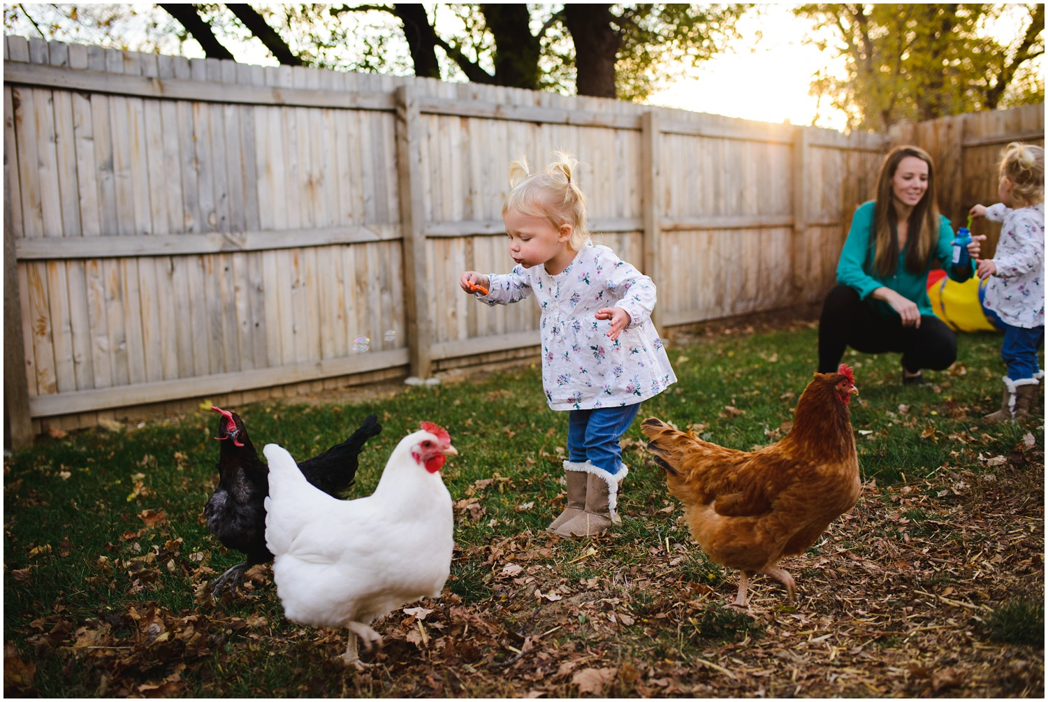 toddlers and chickens in lifestyle photo