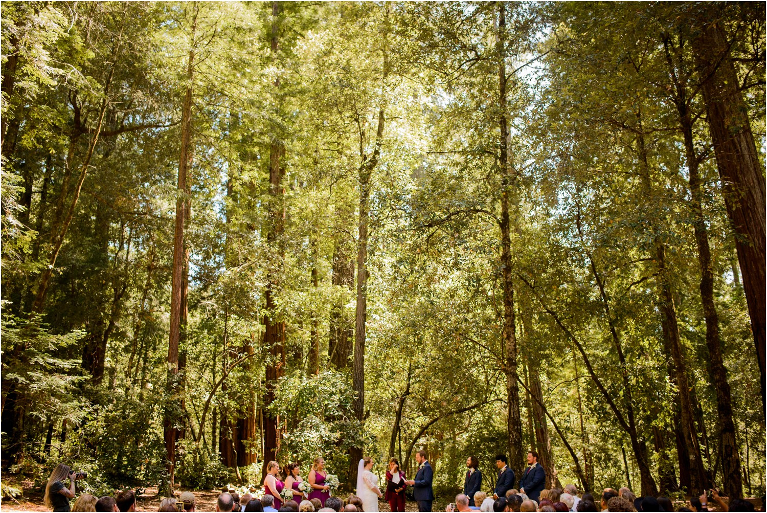 Redwood Wedding Ceremony