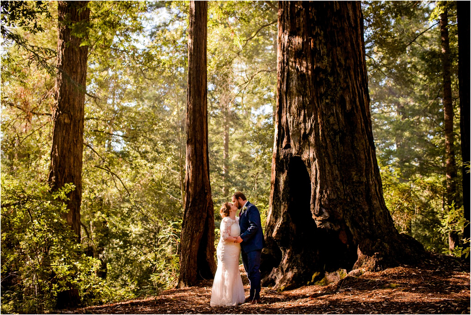 California Forest Wedding portrait