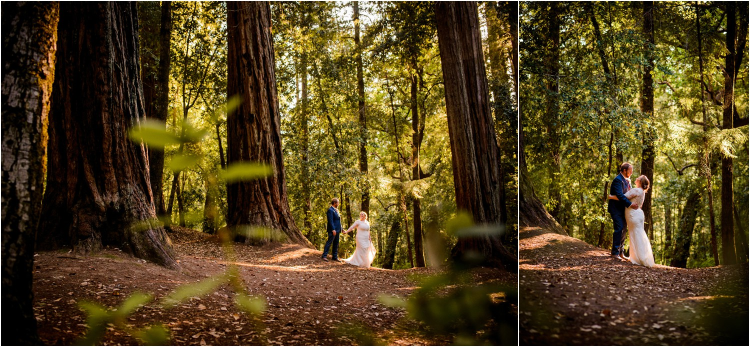 Redwood-Forest-California-Wedding-photography_0098.jpg