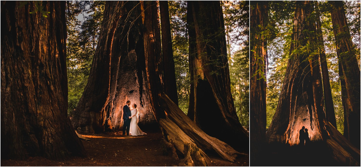 Bride and Groom portrait inside large Redwood Tree