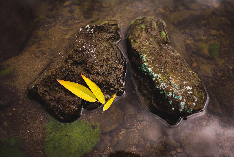 Colorado-fall-fly-fishing-photography_0046.jpg