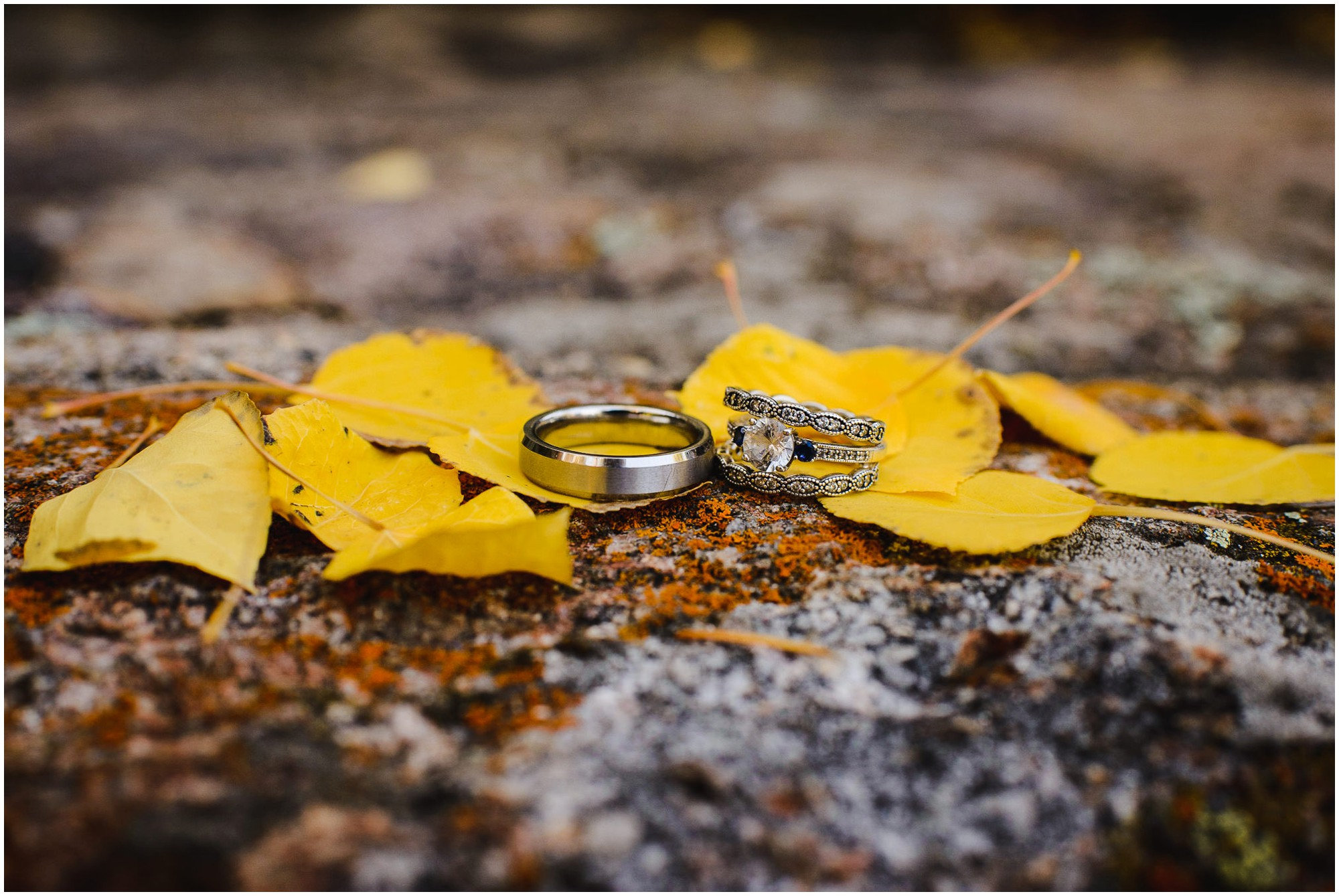 Fall wedding ring photo with aspen leaves