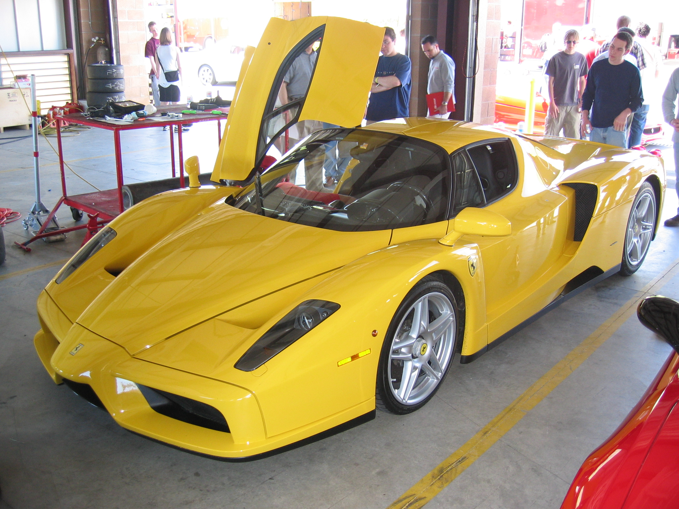 My first Enzo