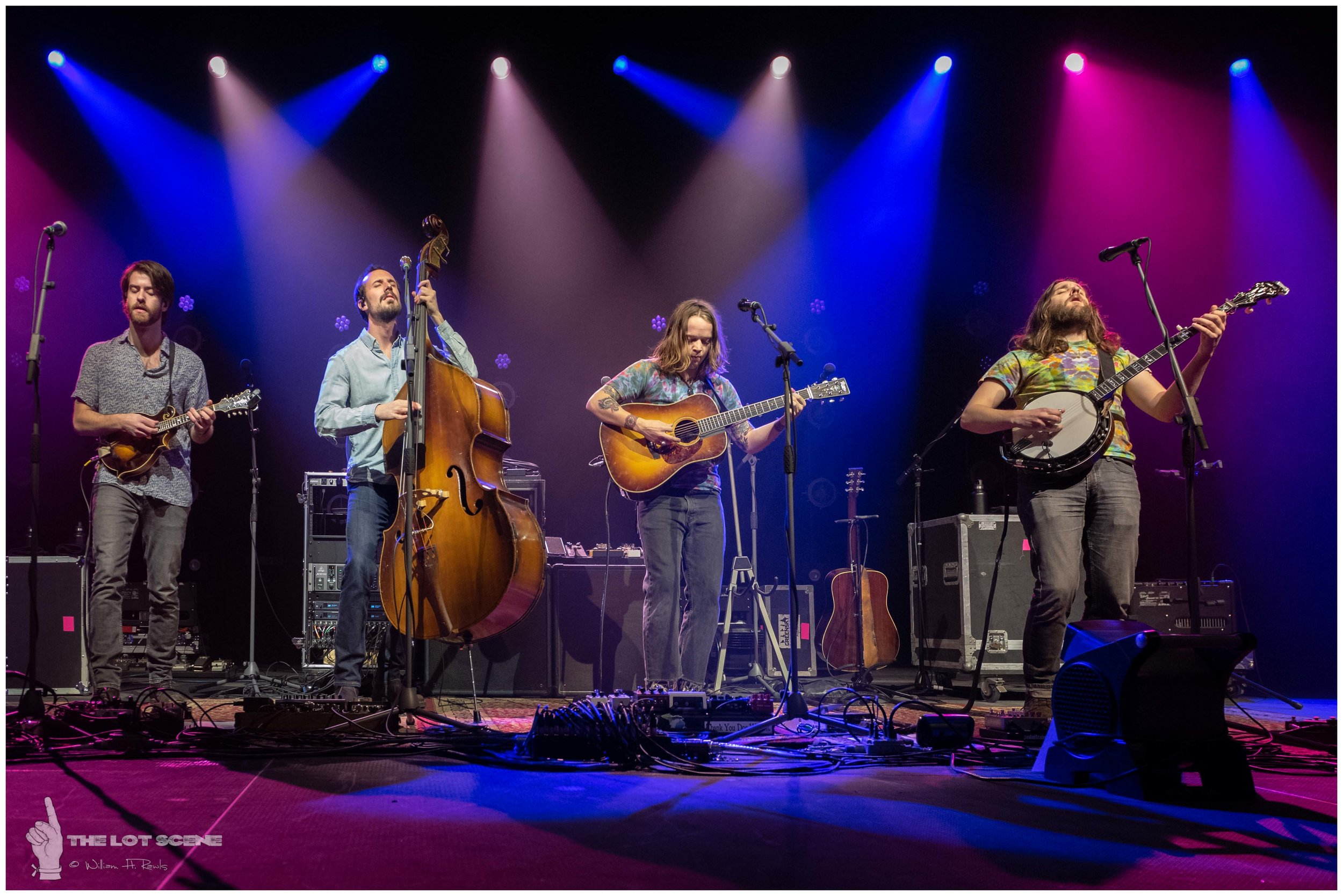 Billy Strings at The Anthem DC - February 2 2019 - 9.jpg
