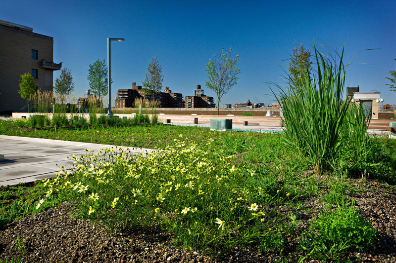 USPS-green-roof-3.jpg
