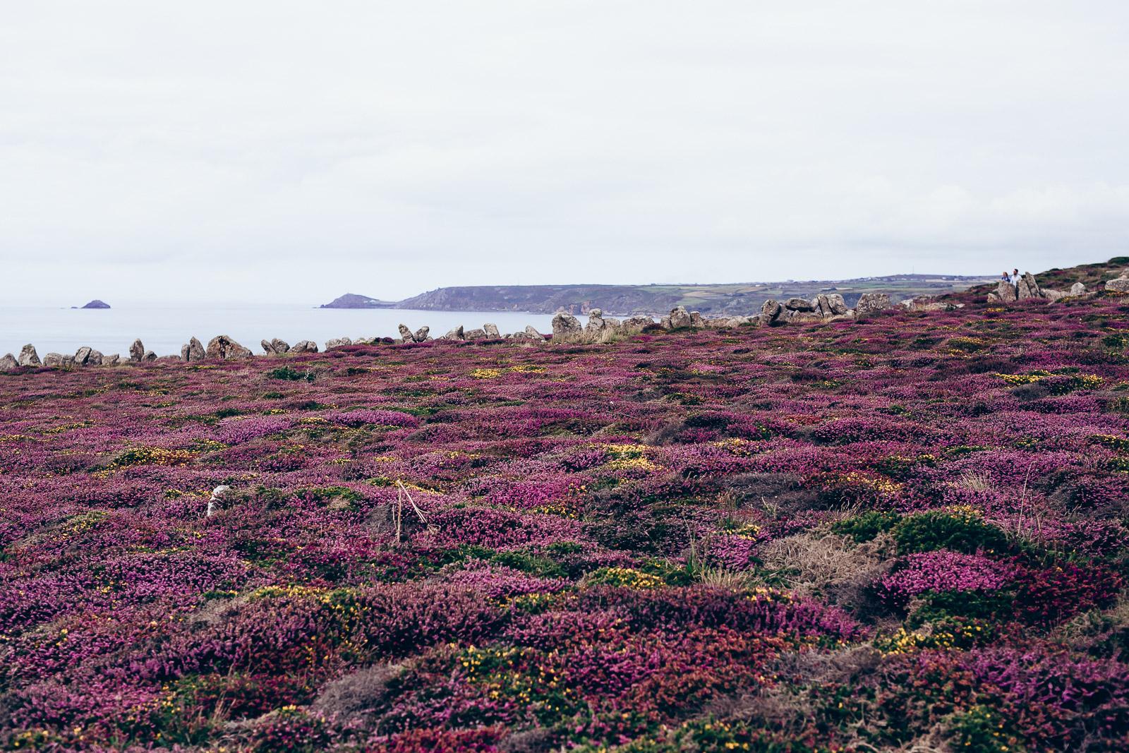 Cornwall 2015-35.JPG