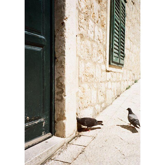 Dubrovnik #35mm