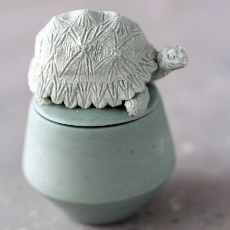 Radiated Tortoise - £130.00