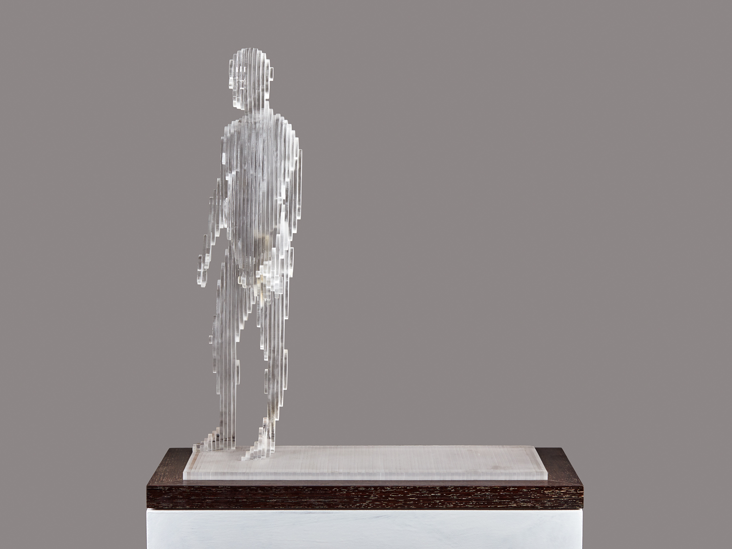 2015 Me V 50cm x 45cm x 20cm extruded acrylic on wenge base .jpg