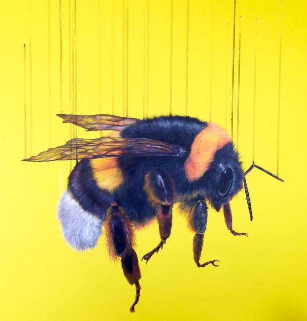 Free Bee - SOLD