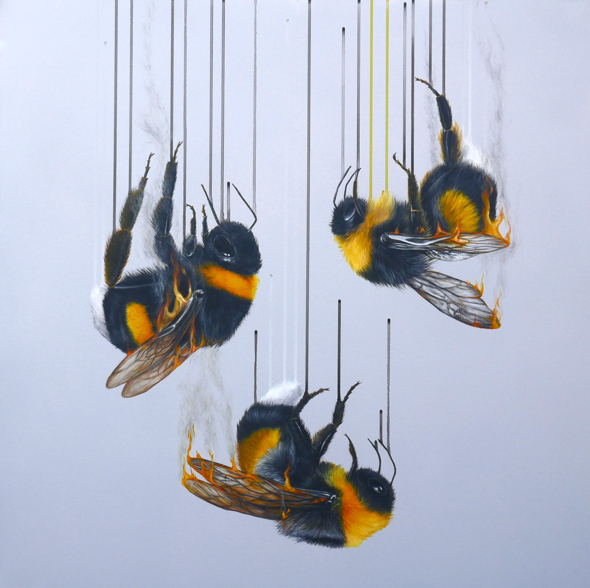 Louise McNaught prints now in stock and available from Elements at Bils & Rye
