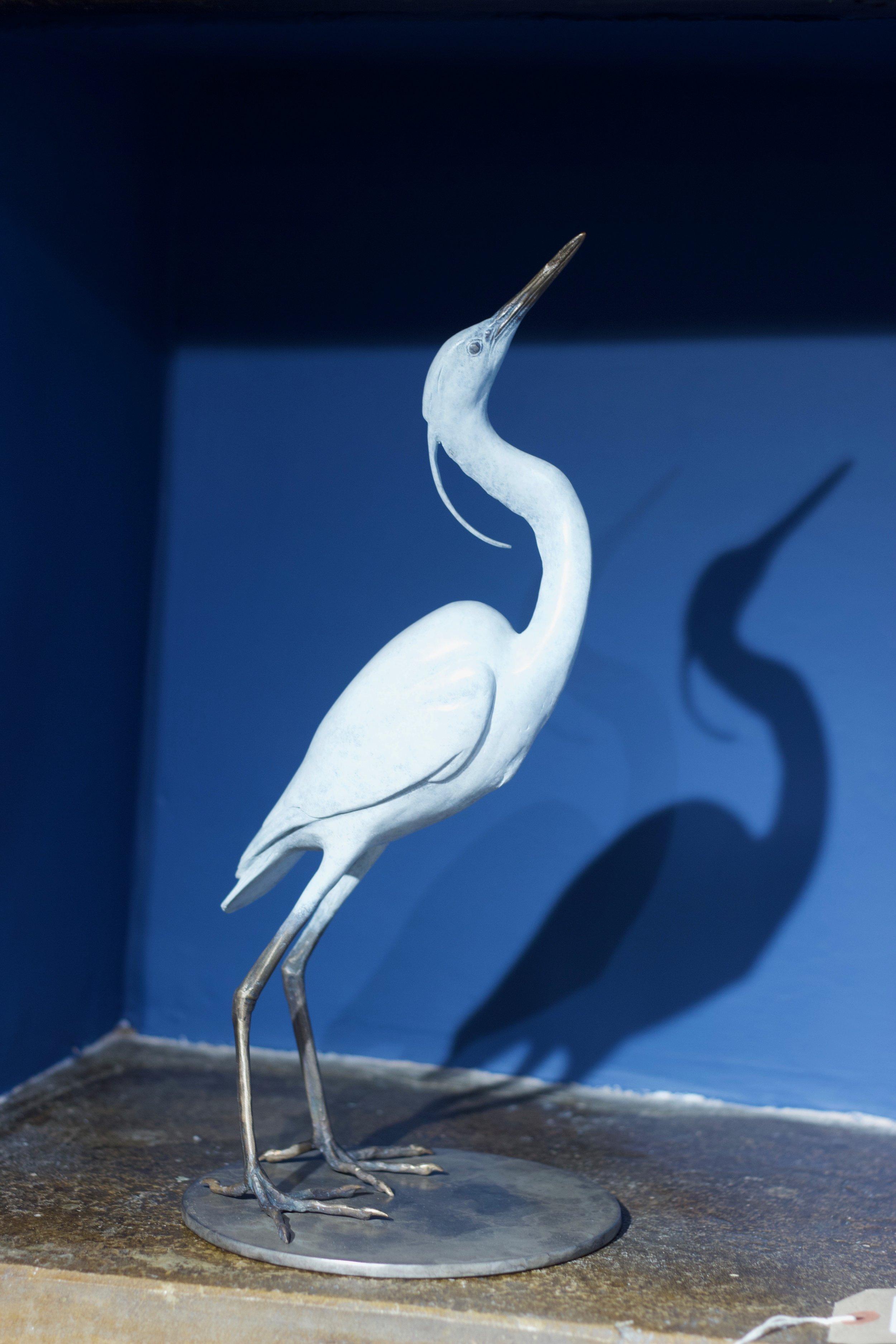 Scott Shore - Snowy Egret