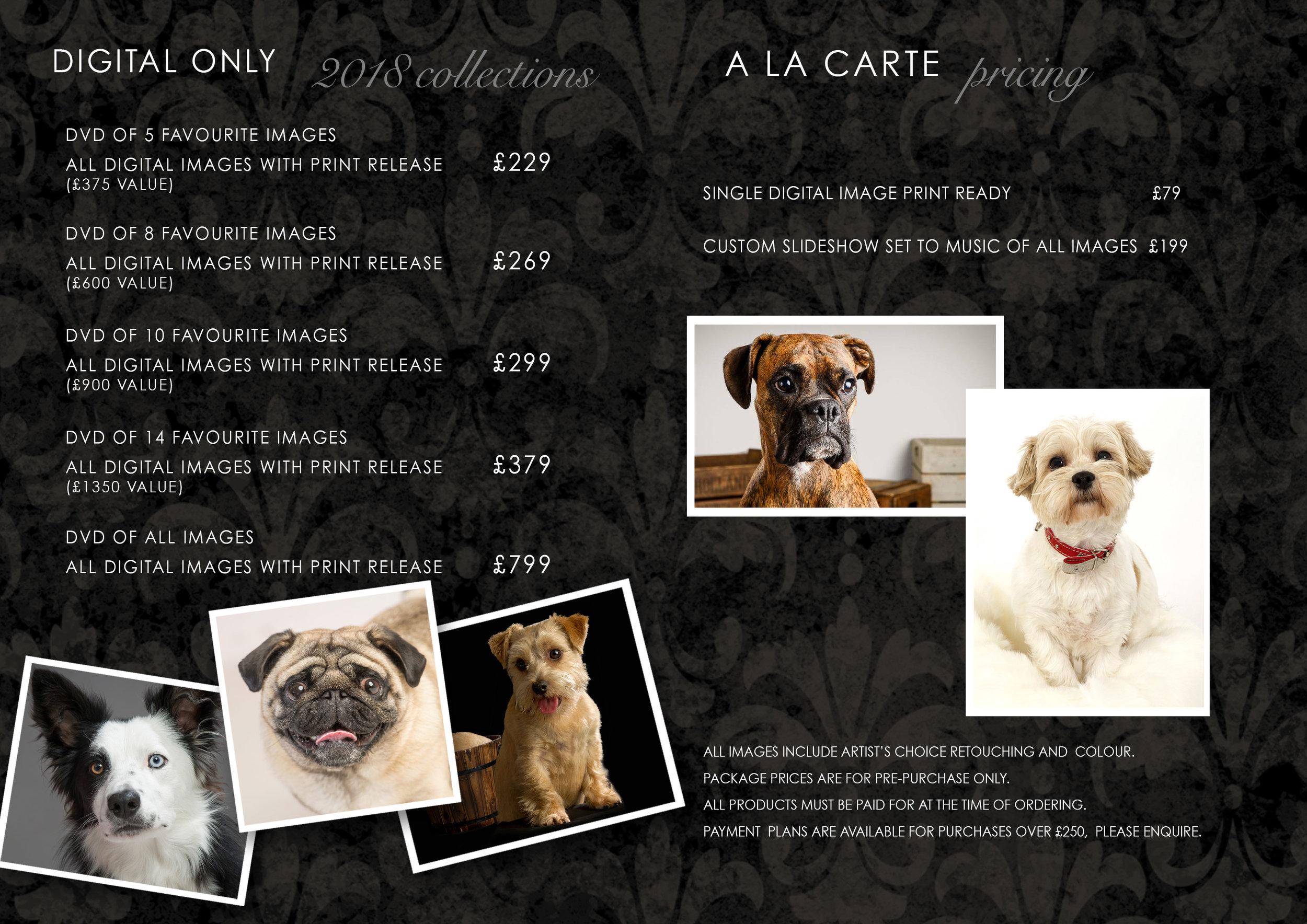 Pricing inside Dogy offers 2018 Digital Final.jpg