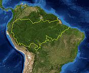 Amazon Basin delineated by WWF.Satellite image NASA.