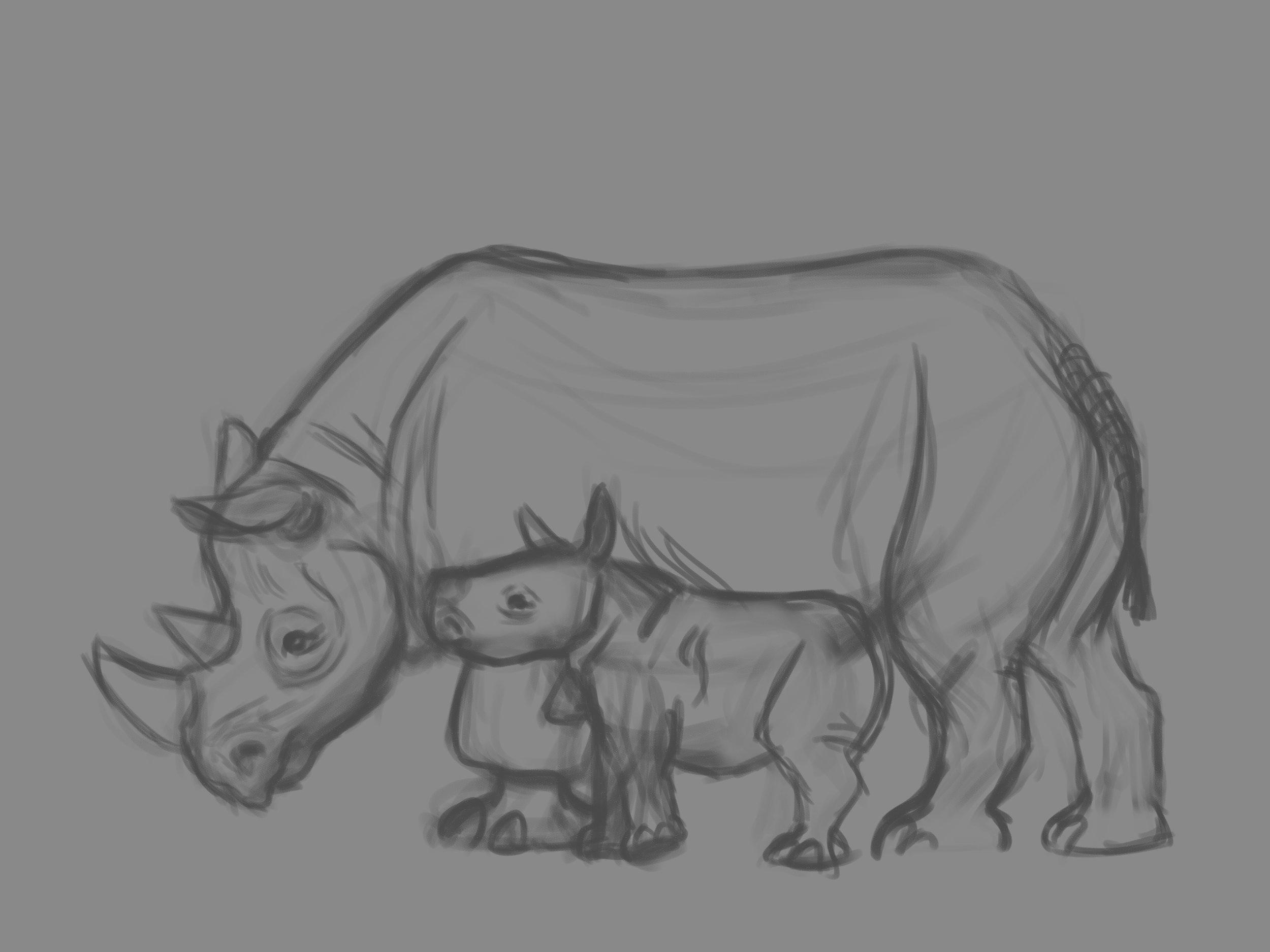 rhino life sketches 4.jpg