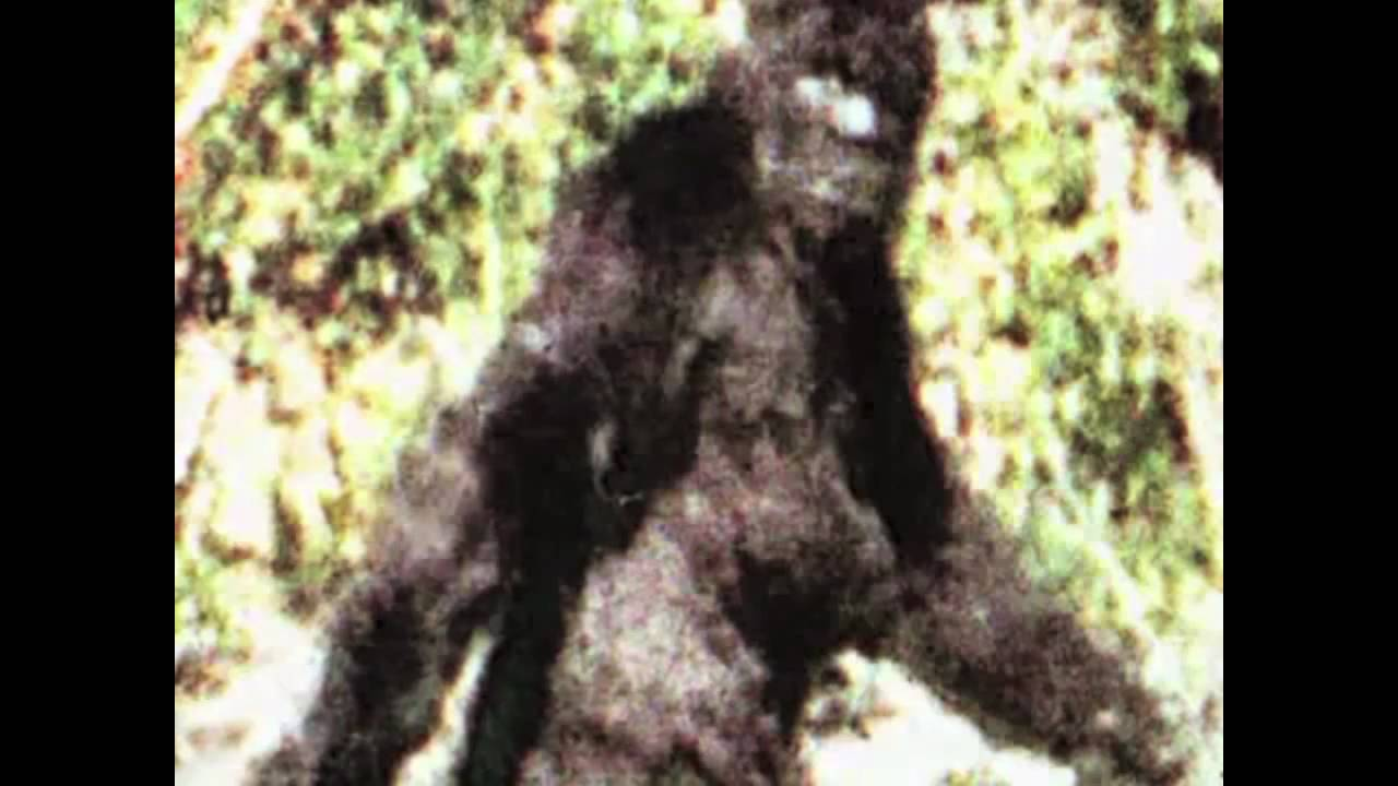 Apparently a lady Bigfoot still from the frame.