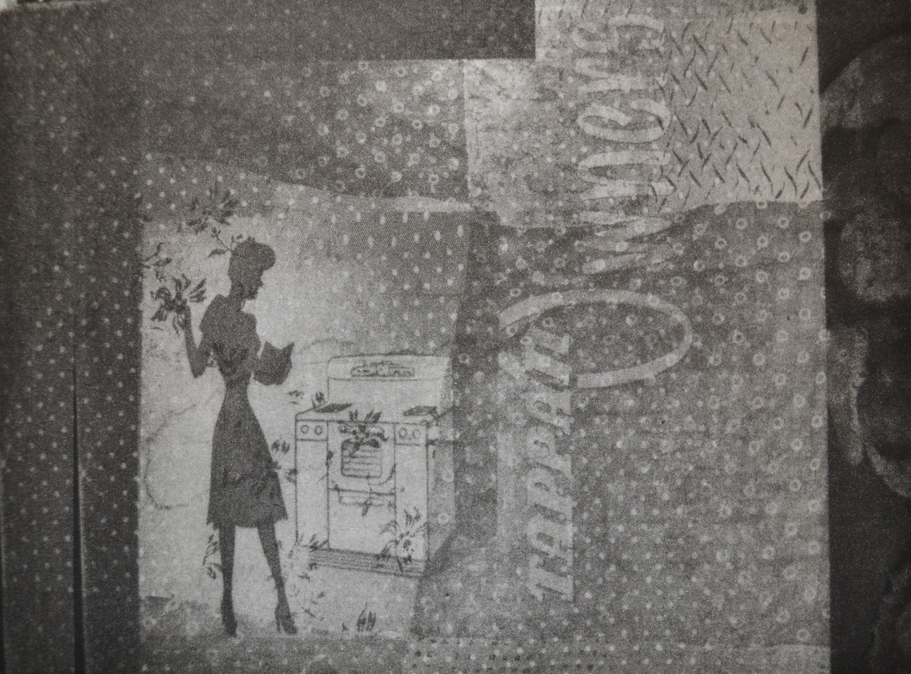 "Own it, 6 x 8"", photogravure, 2013"