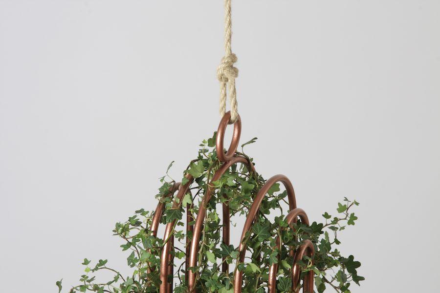 Orator-Urban-bird-nest-03.jpeg