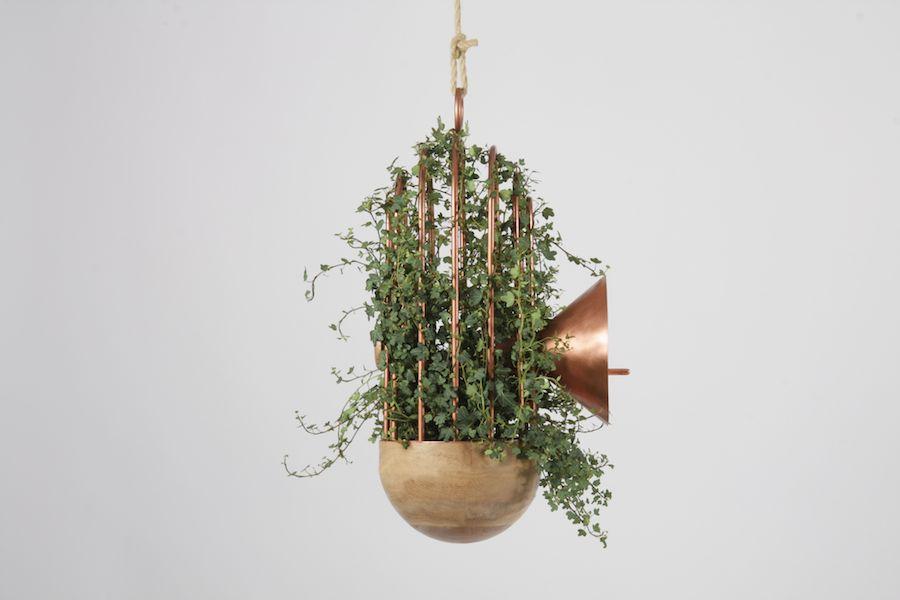 Orator-Urban-bird-nest-08.jpeg