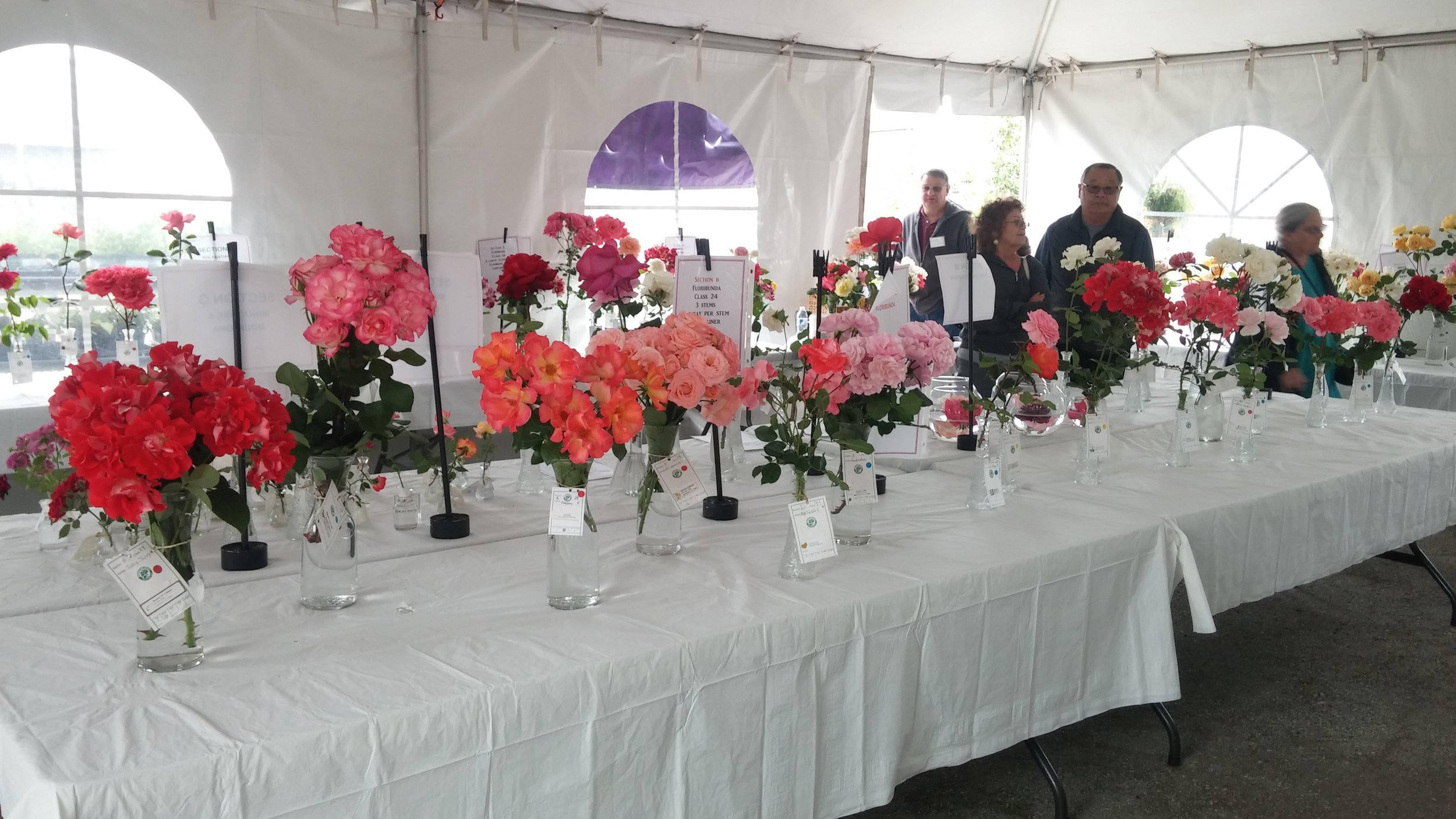 Monterey Bay Rose Society