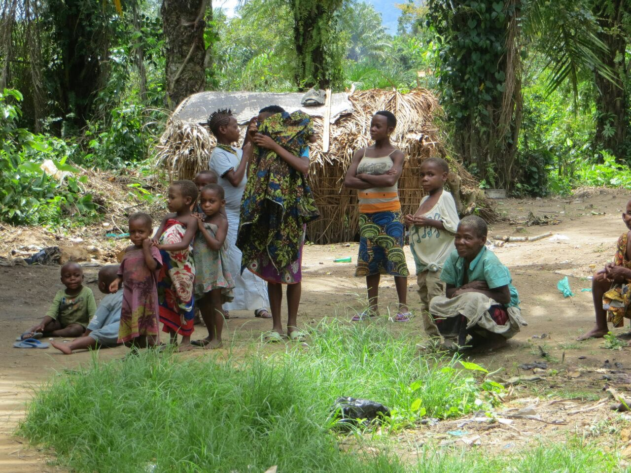 Pygmy population in DR Congo forced to flee because of those fighting and competing for the country's natural resources.