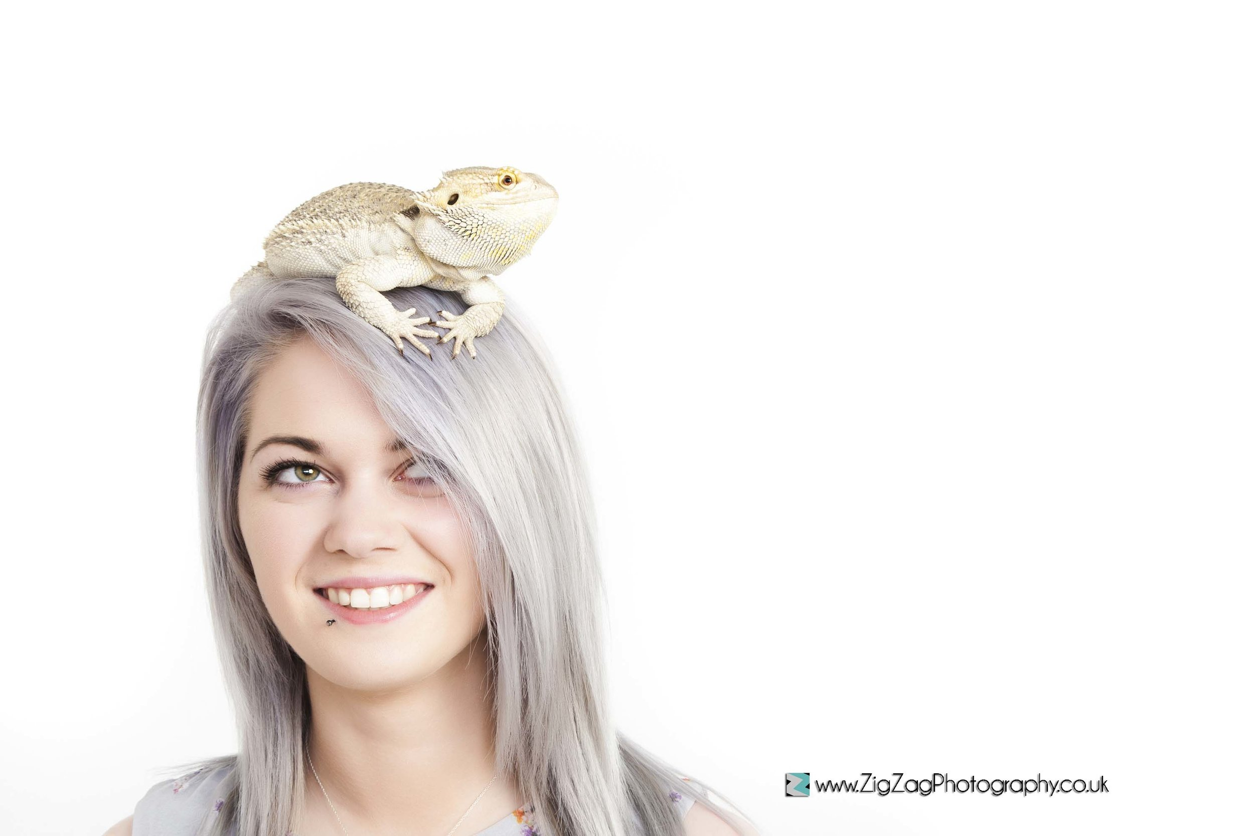 photography-photoshoot-leicester-studio-session-zigzag-reptile-cameleon-pets-animal-girl-hair-blonde-white.jpg