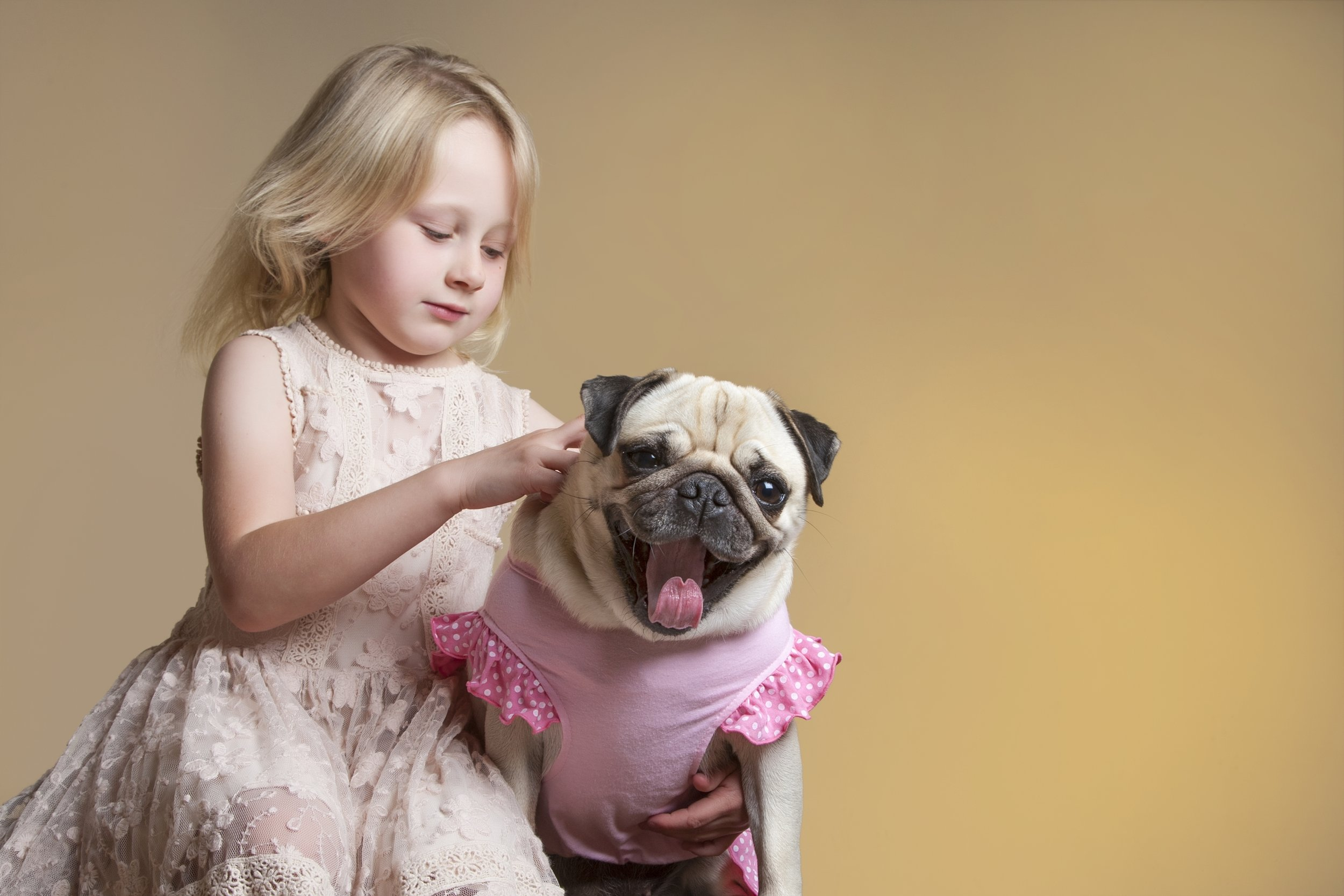 zigzag-photography-leicester-zig-zag-photographers-photo-studio-clarendon-park-queens-road-best-family-portraits-children-dog-dress-up-outfit-girl-animal-pet.jpg