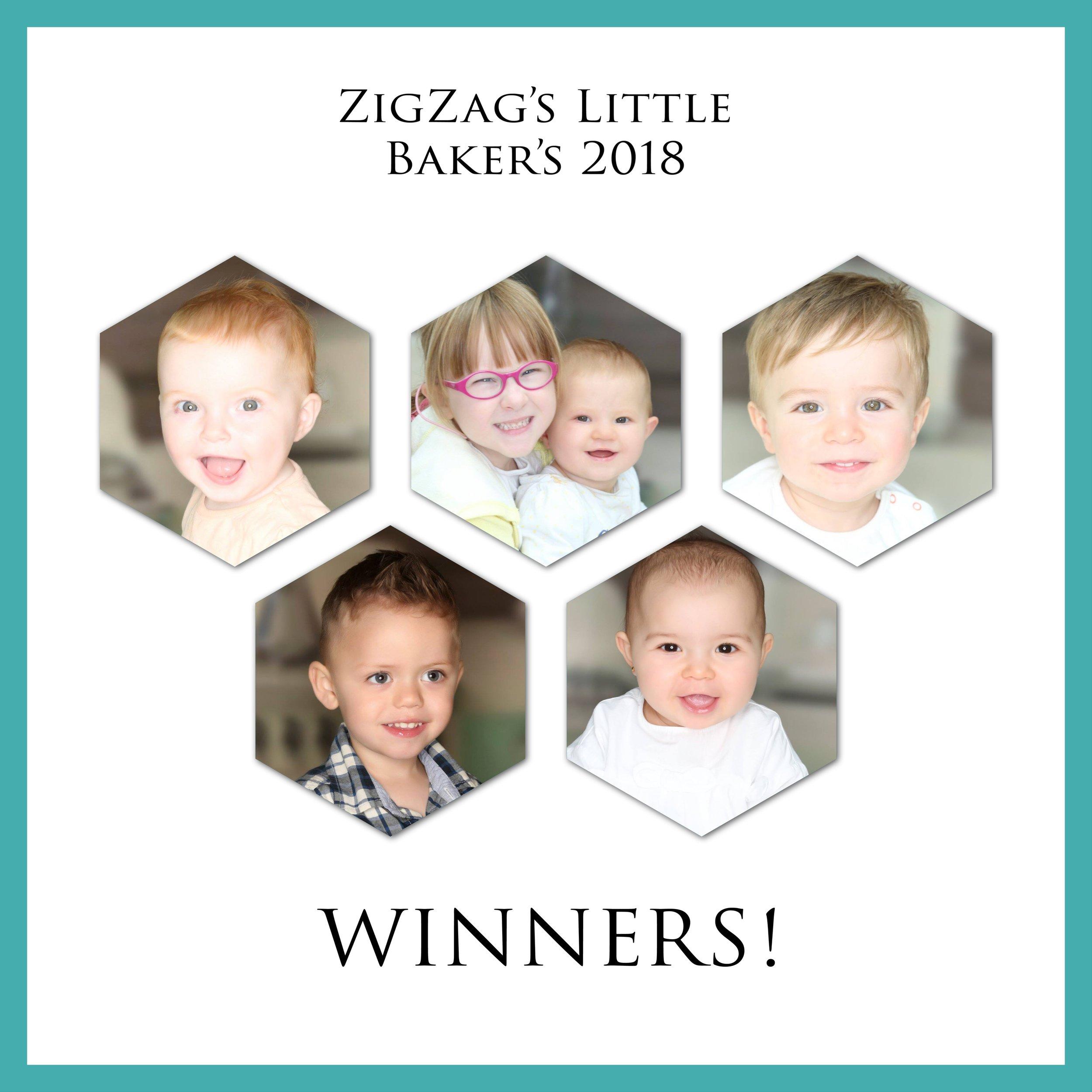 zig-zag-little-bakers-photography-leicester.JPEG