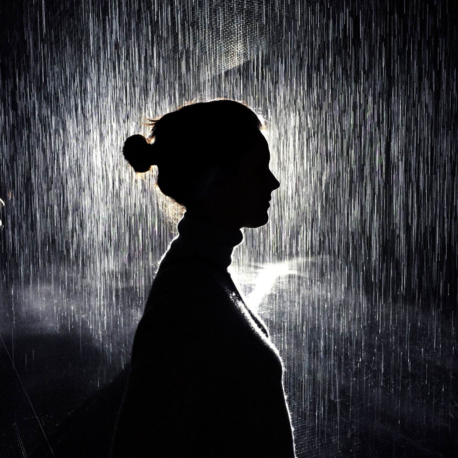 Portrait_Rain-Room.jpg