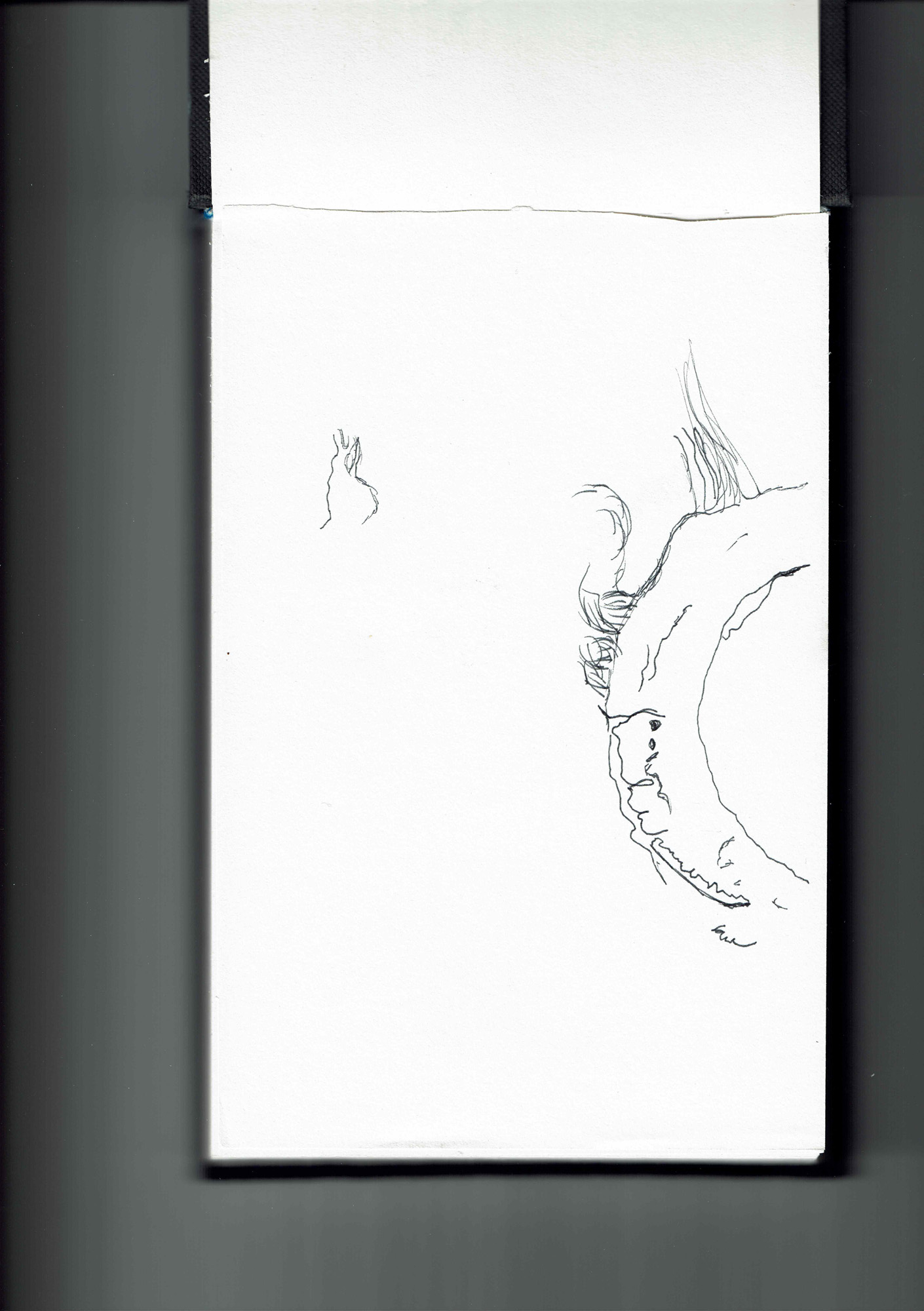 Kristjan Torr sketch03.jpg