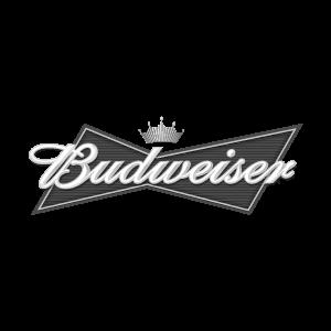 Budweiser_2008.png