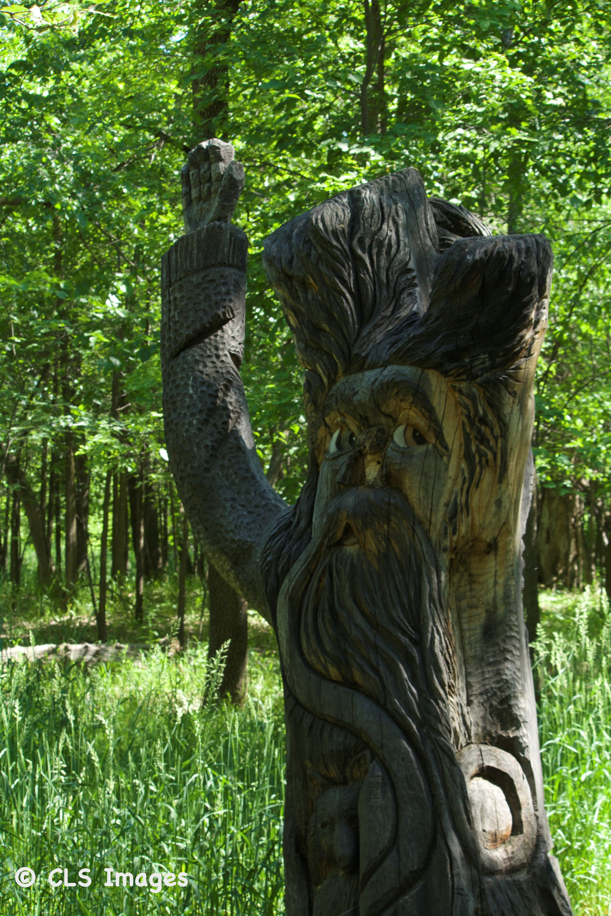 Our destination was to see Woody… the largest Tree Spirit in the forest!