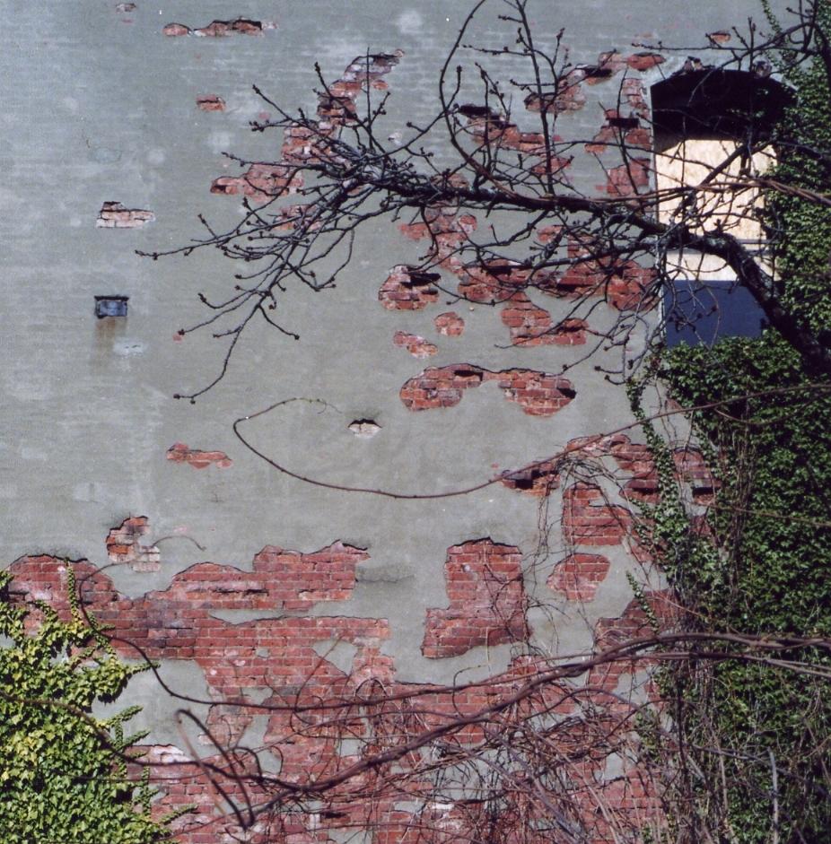 Peeling Wall, Ballard