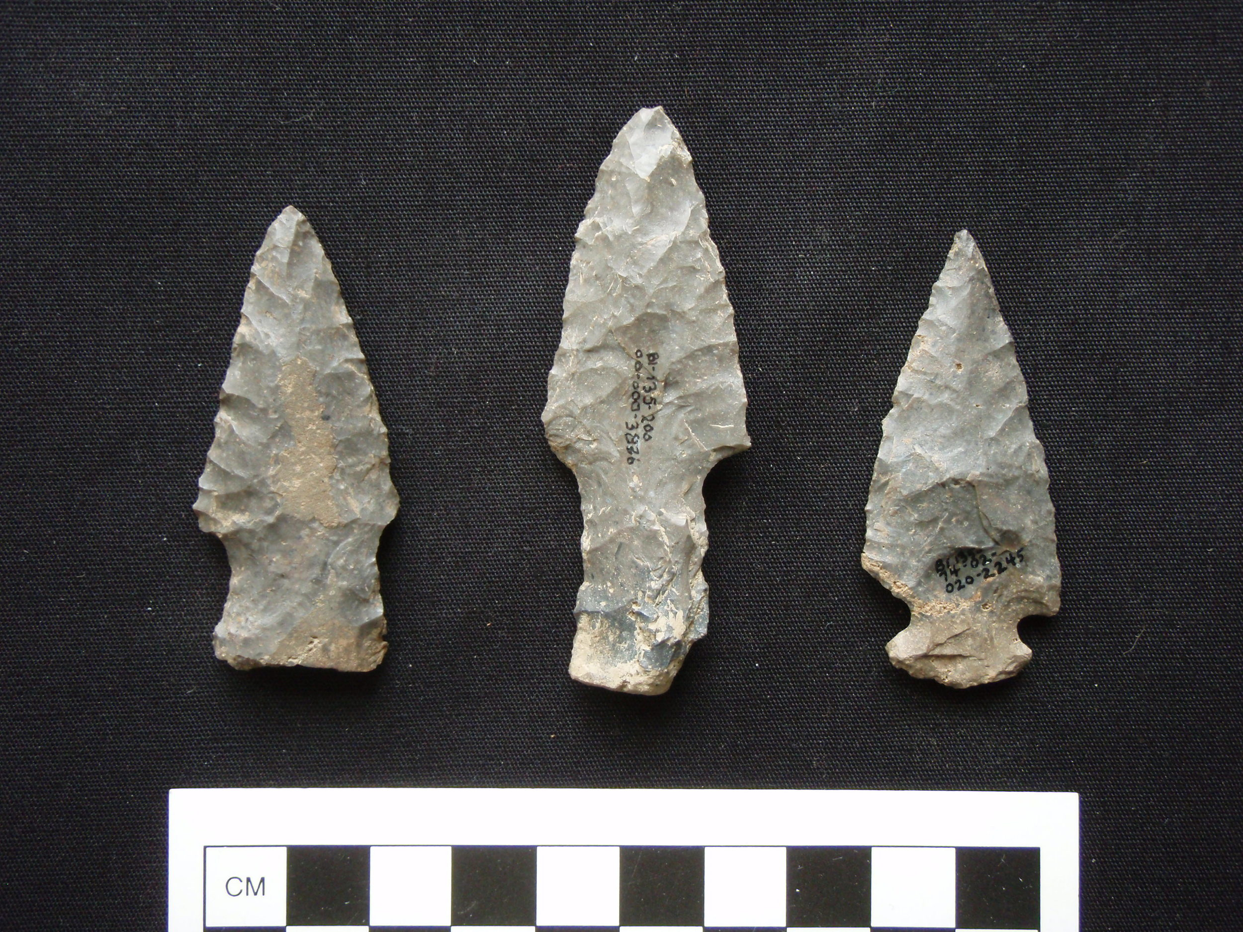 Two Lamoka points and an untyped,notched point from the same site in the upper Susquehanna valley.