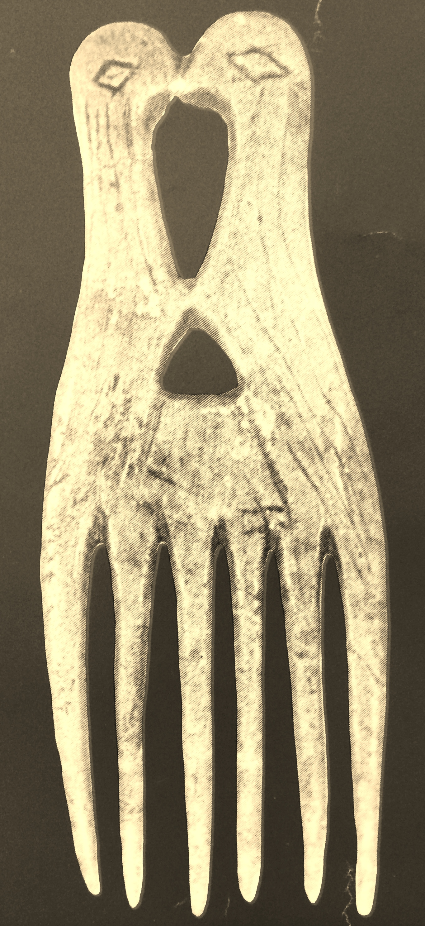 Bone comb from Frontenac Island illustrated in Ritchie's Archaeology of New York State (Source: 1993 New York State Archaeology Week poster).