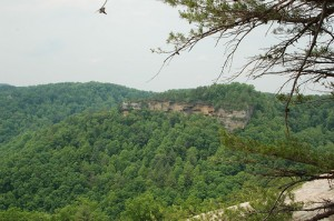 Daniel Boone National Forest, where Cliff Palace Pond is located. Photo Credit: tommrkr