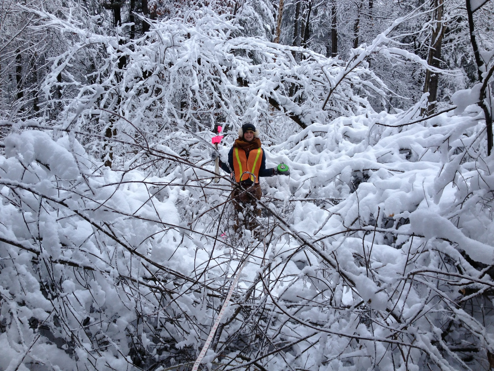 "This photo was taken in December, 2014, in some very snowy woods near Saratoga Lake.  Now part of a well-known meme, it has circled the globe each of the last 3 winters, reminding us that ""If your're cold, they're cold..."""