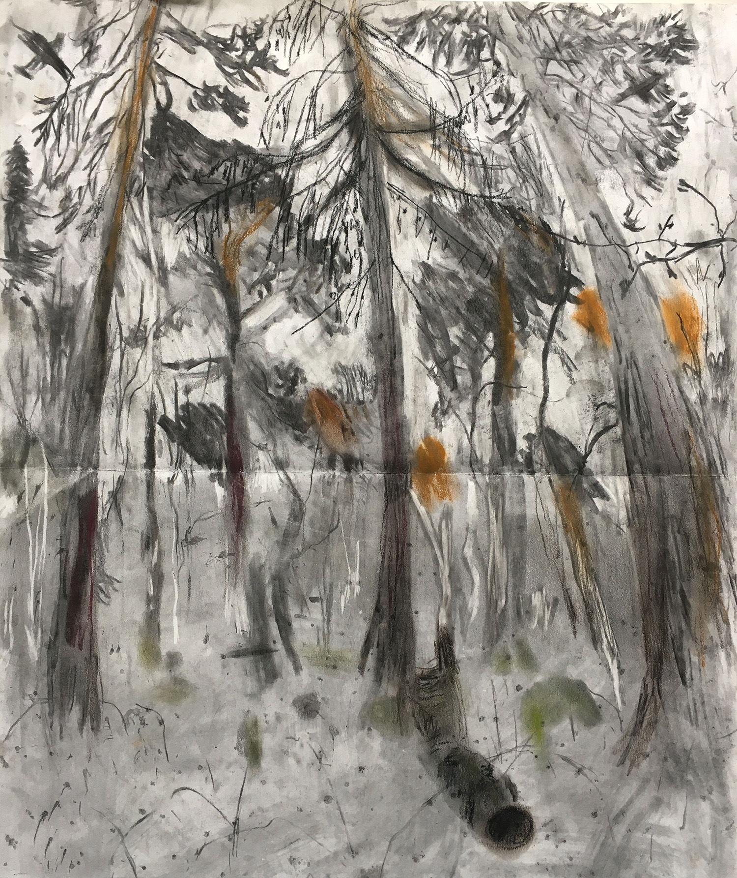 Planes Over Epping Forest Charcoal and pastel on paper, 53x60cm