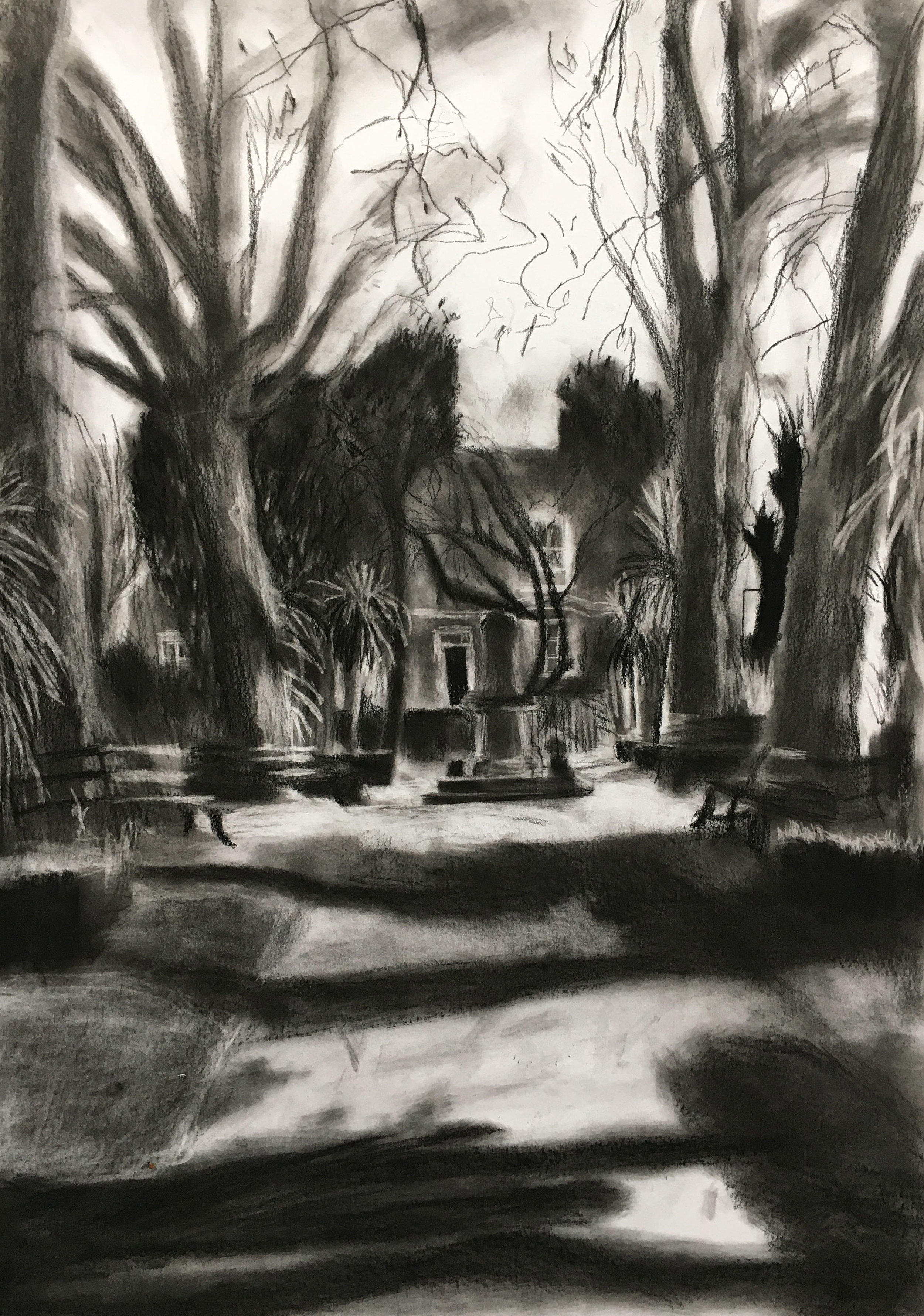 Long Shadows  Conte and graphite on paper, 42x59cm