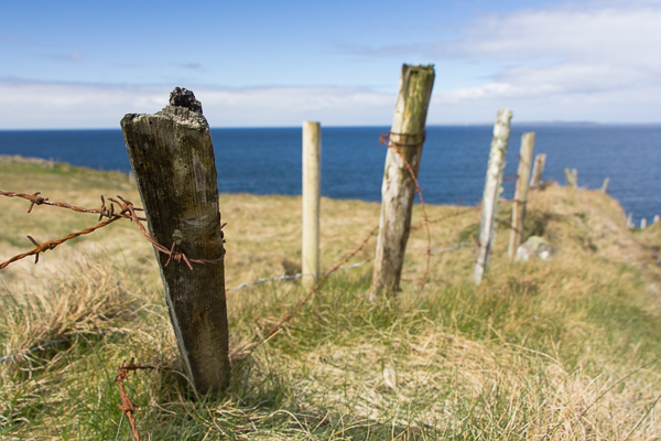 Fences of Moher
