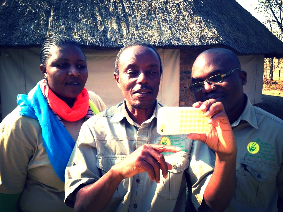 Staff practicing social media skills at Hub leader training, August 2014,    Africa Centre for Holistic Management   , Zimbabwe.
