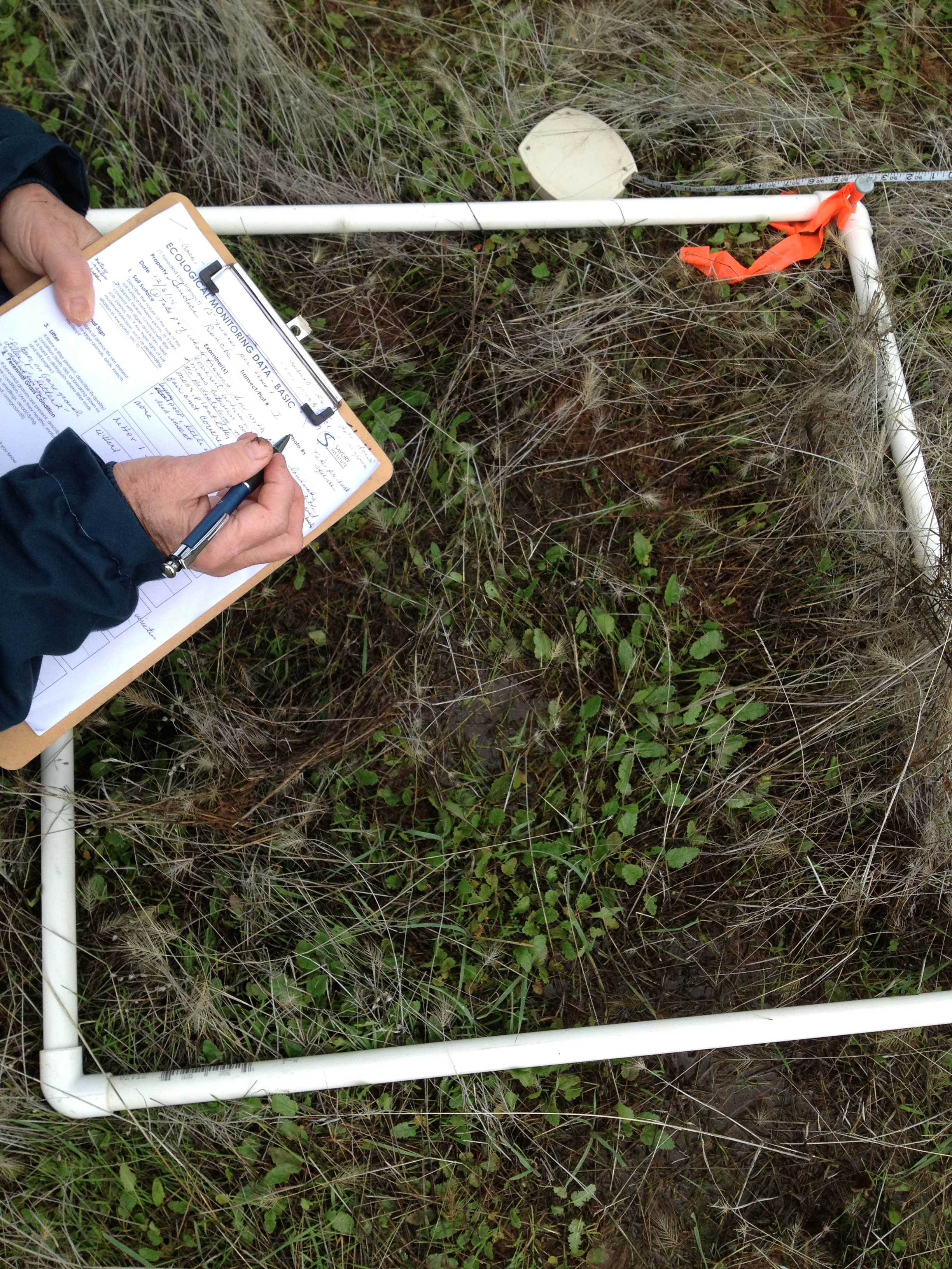 How much a square of soil can tell you! Learning to read the land, Guidici Ranch, 2014