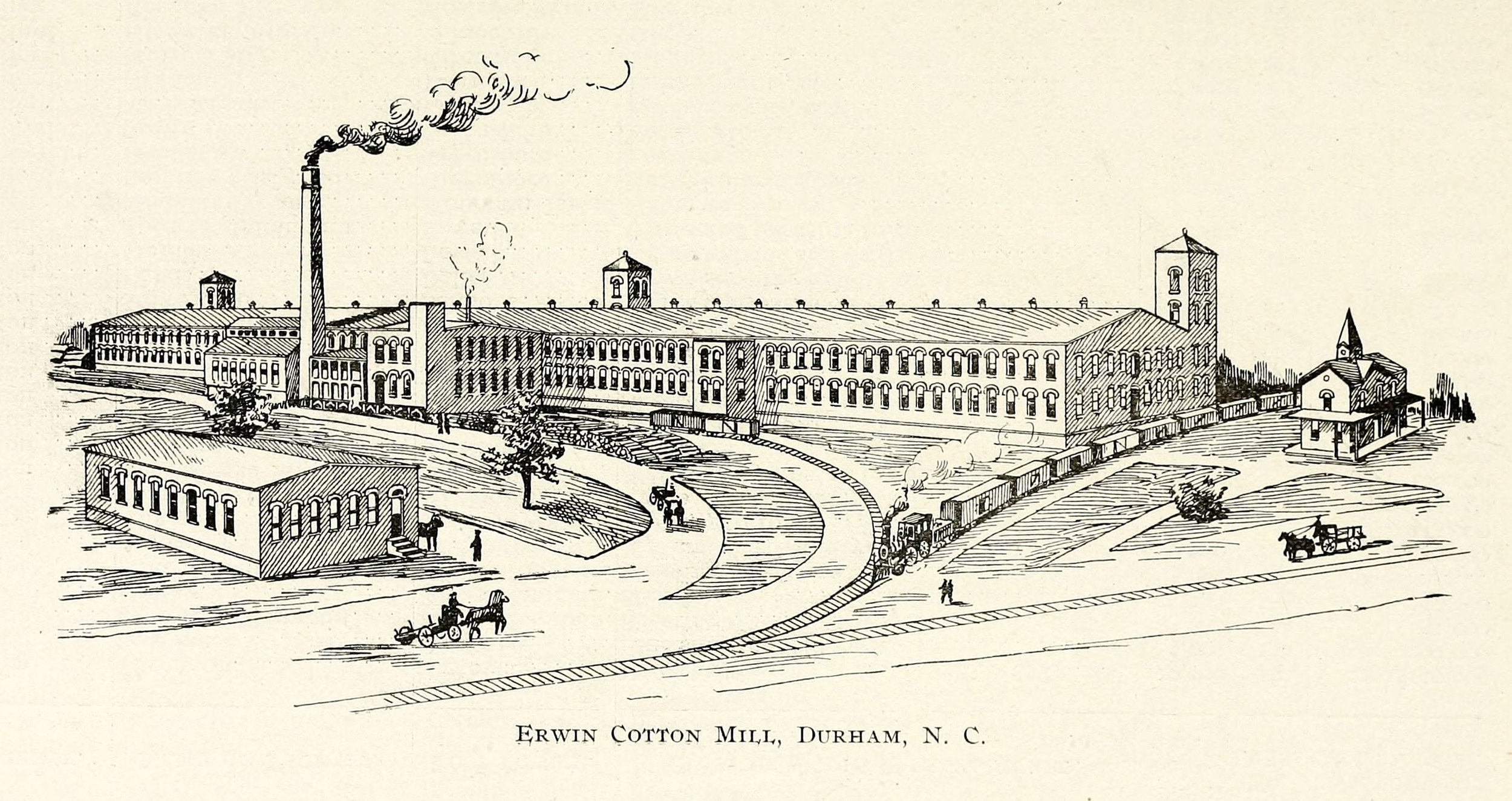 erwin mill illustration.jpg
