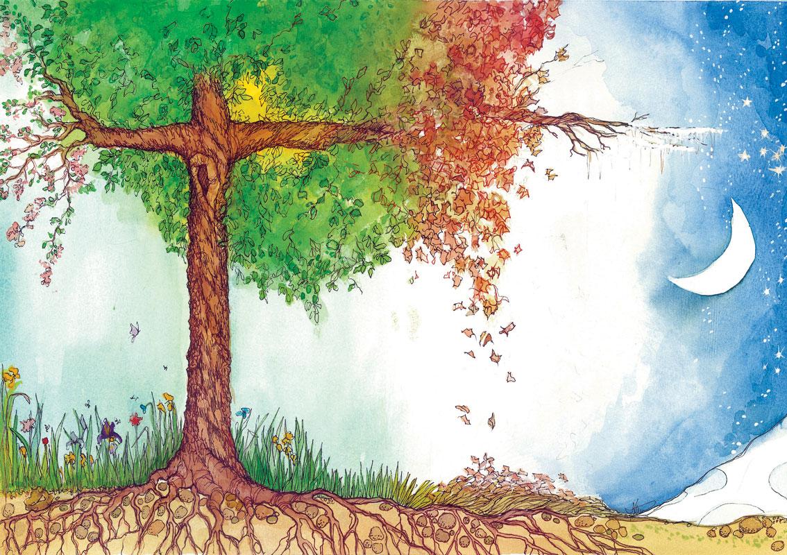 HP11 Tree of Life