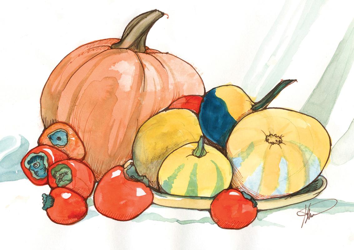 NO11 Fall Harvest